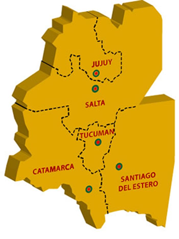Pueblos Originarios Región Noreste