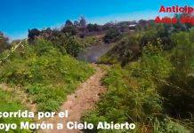 Arroyo Morón