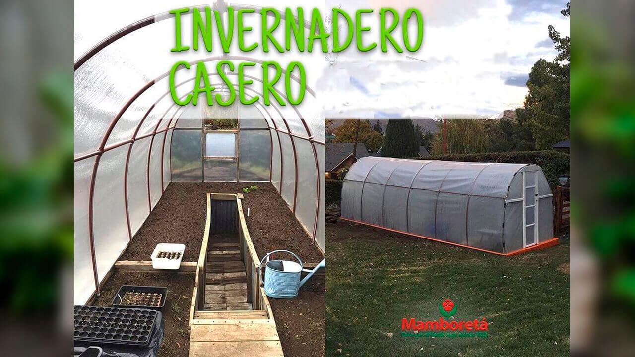 Desde Ituzaingó, Mamboretá te enseña a tener tu invernadero Indoor Diario Anticipos