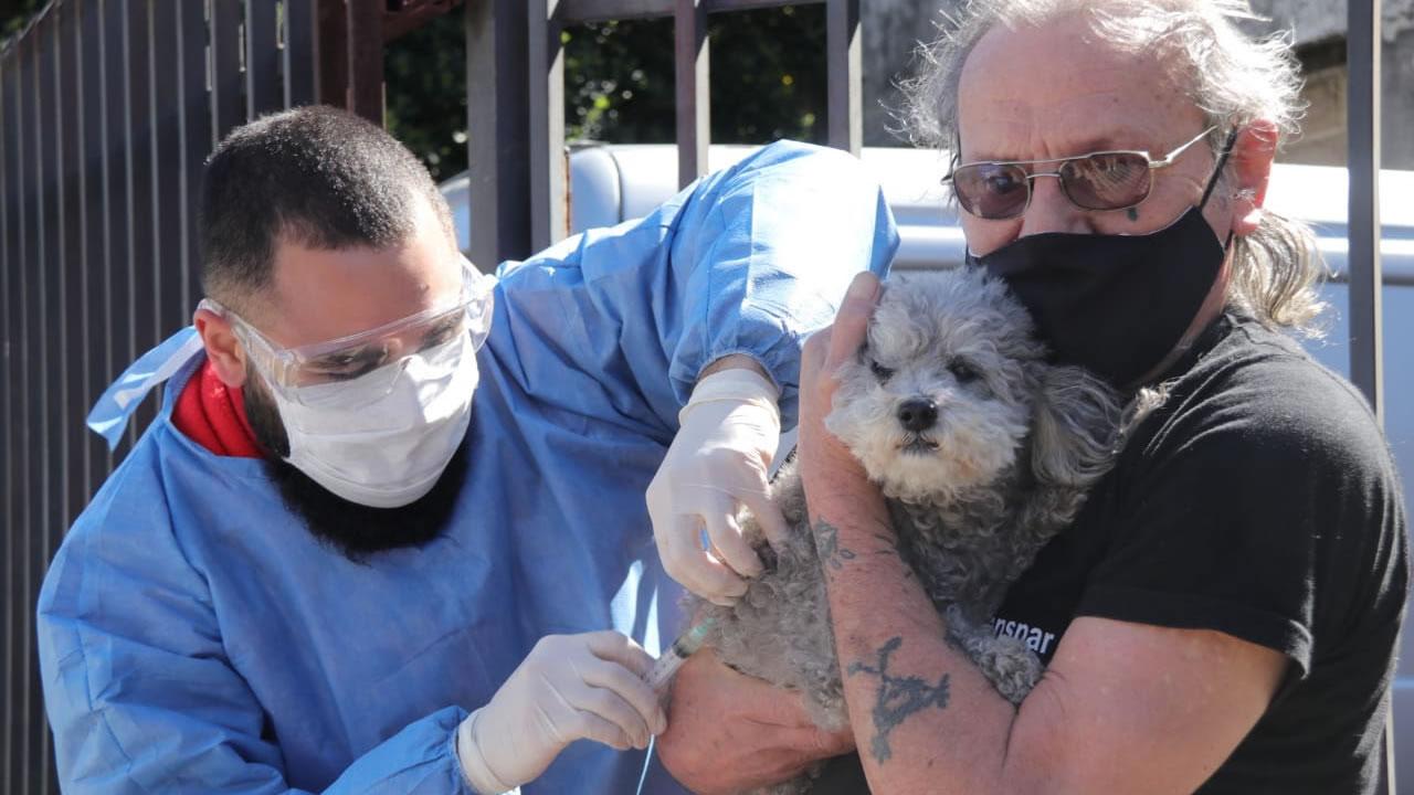 Morón COVID-19: Operativo de detección temprana en El Palomar. También vacunación de mascotas.