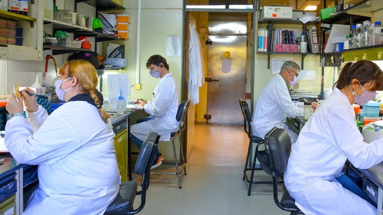 Orgullo: Científicos argentinos